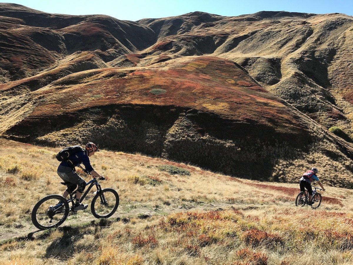 mountain-bike-appennino tosco emiliano gps cespigli di mirtilli autunno